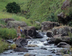 Fly fishing in the Drakensberg Mountains