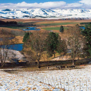 Snow in the Drakensberg Mountains